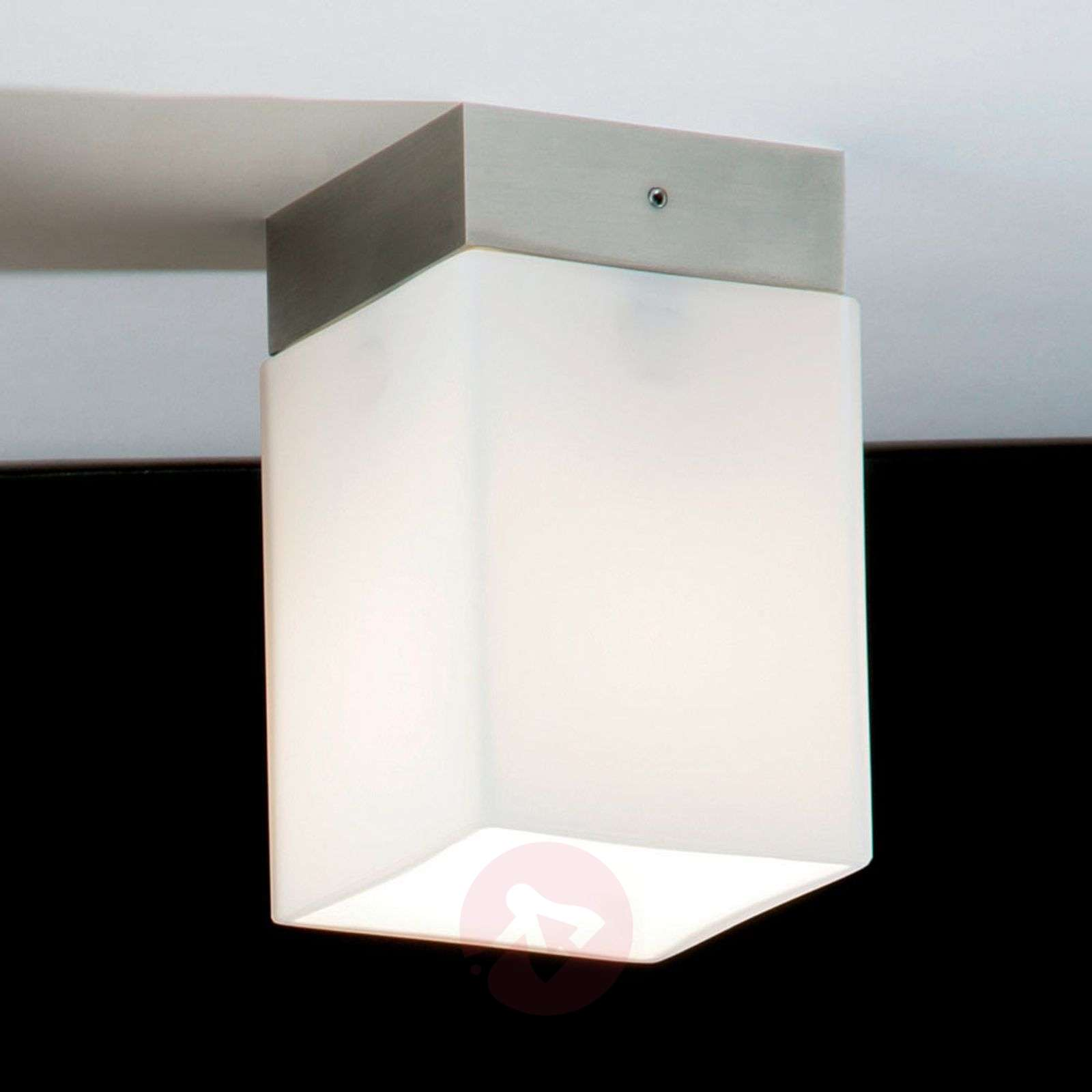 Plafoniere Per Box : Acquista plafoniera corta quadro box short lampade