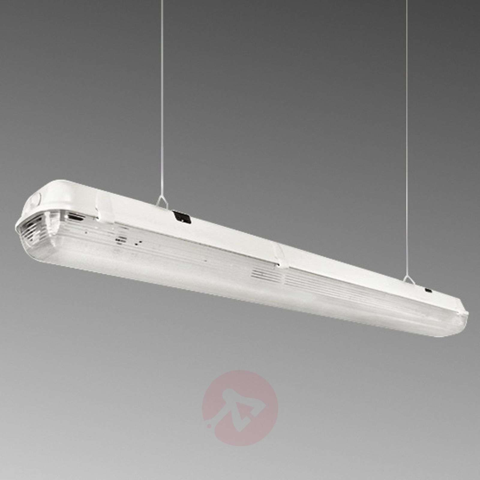 Plafoniera Stagna Led 150 Cm : Acquista plafoniera stagna led per l industria w lampade