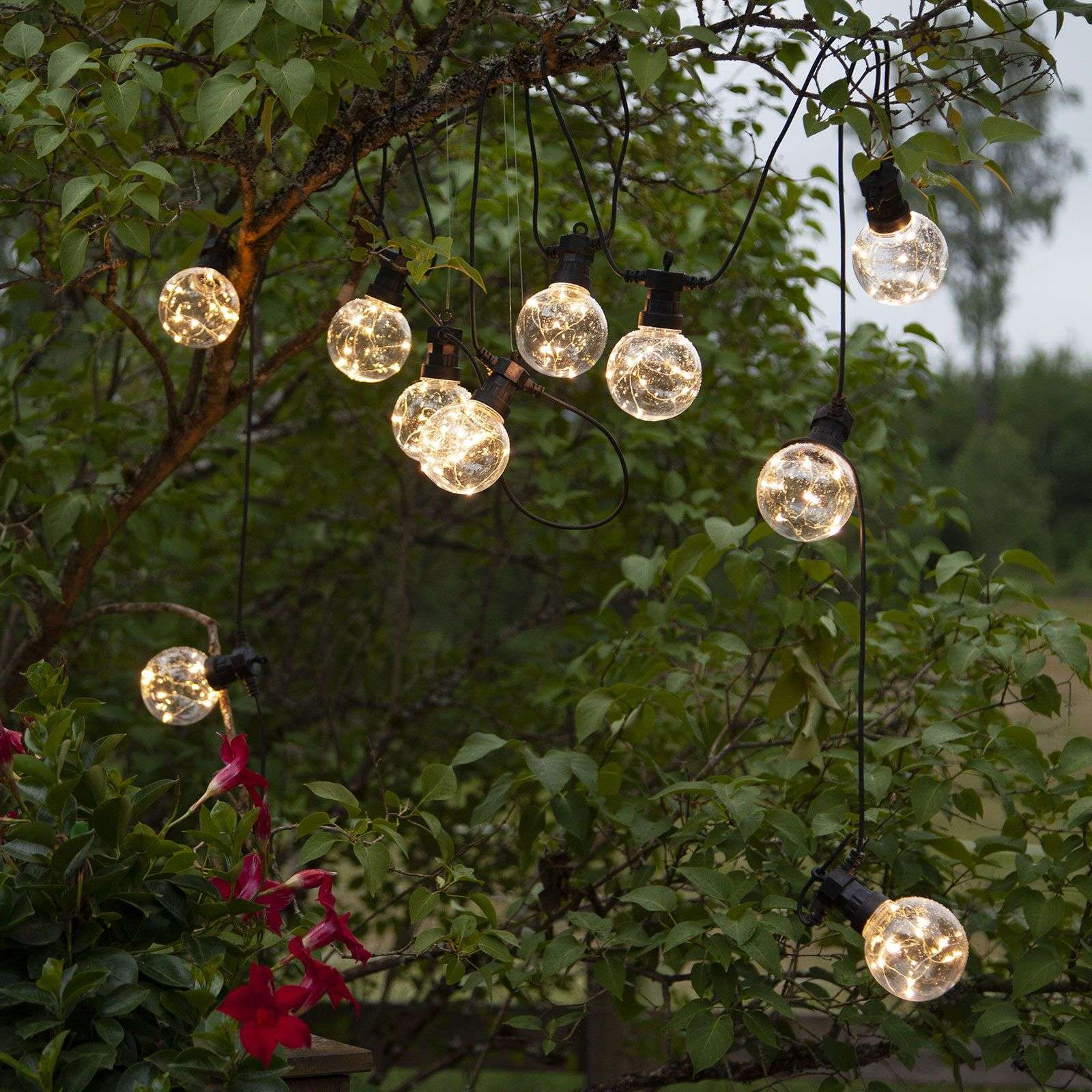 Catena luminosa LED Big Circus, Dew Drops