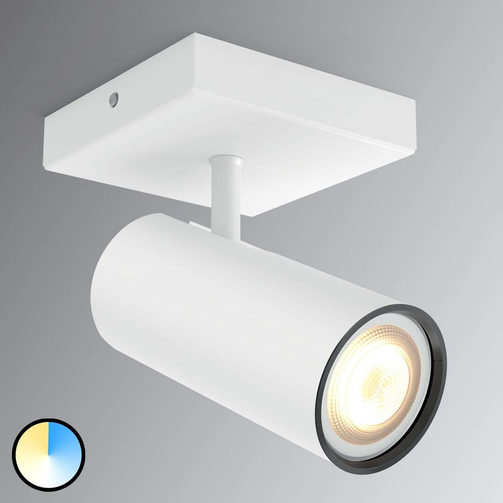 Spot LED Philips Hue Buratto con dimmer
